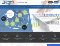 Diversity-Fund review